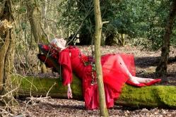 Lying on a fallen tree