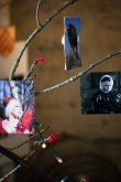 Photos hung from a tree