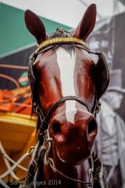 Brooklands Museum-65