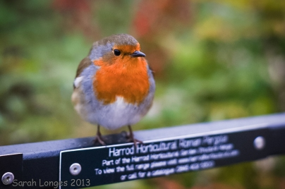 Harrod Horticulture