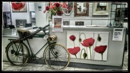 War-time Bicycle and Poppies