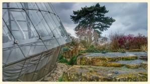 Davies Alpine House and Rock Garden
