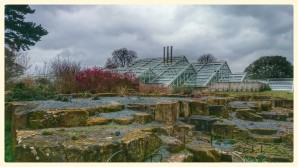 View From The Rock Garden