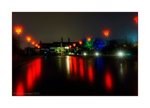 Wisley Lights Up