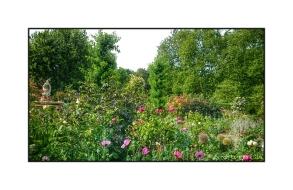 Flowers in Hyde Park Rose Garden