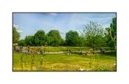 The Diana Memorial in Hyde Park