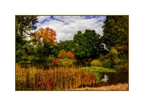 Lake View At Wisley Gardens