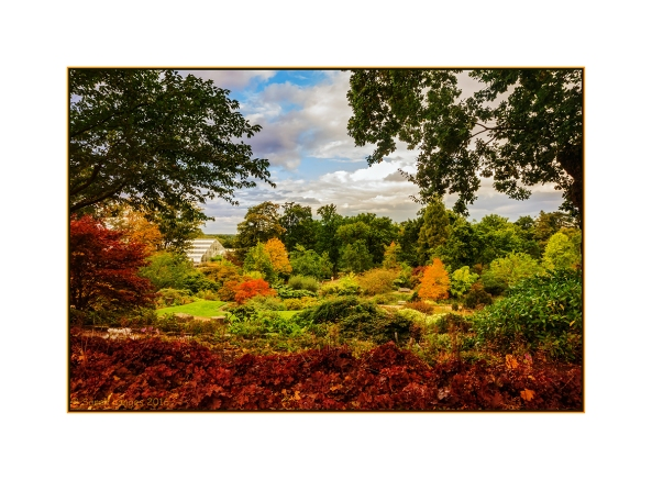 View Over The Rock Garden At Wisley Gardens