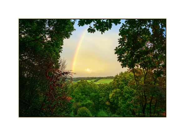 Rainbow at Winkworth Arboretum