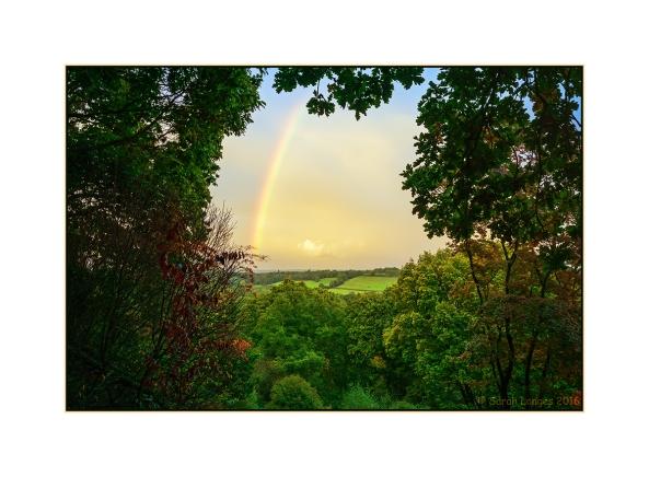 Rainbow at Winkworth Arboretum