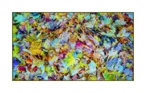Autumn Leaf Pile