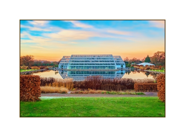 The RHS Wisley Glasshouse