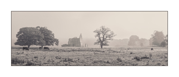 Newark Priory In The Mist