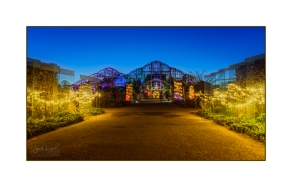 Wisley Glow At The Glasshouse