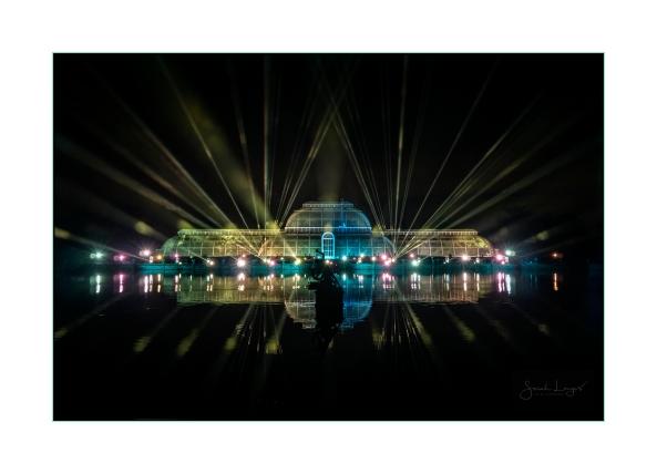 Christmas At Kew Light Show
